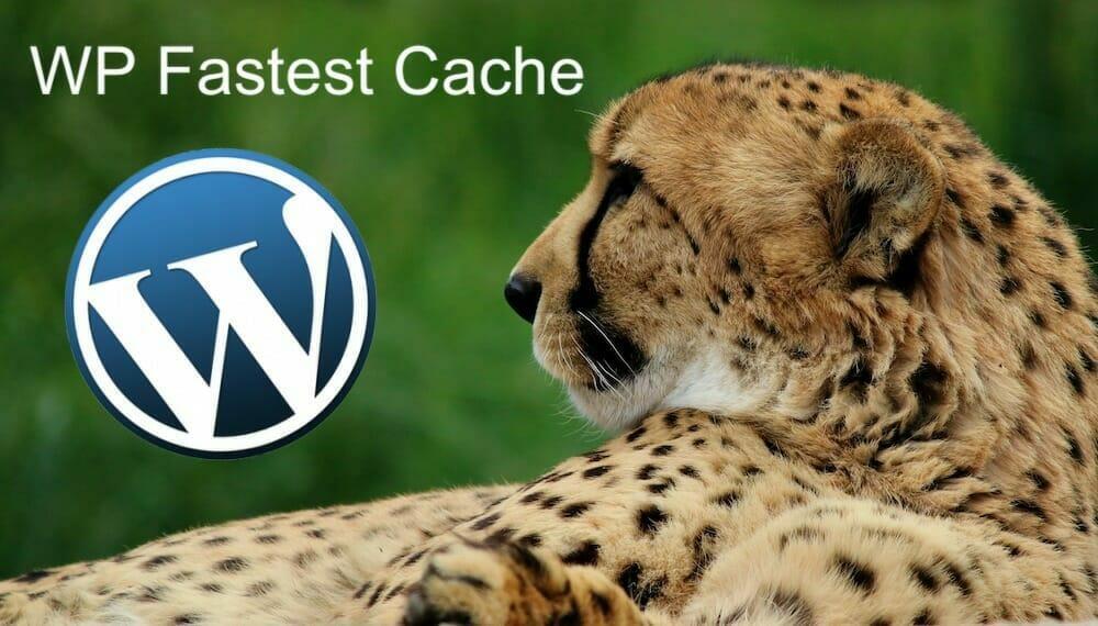 configurar wp fastest cache